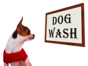 dog-wash-sign-showing-canine-grooming-washing-or-shampoo_M1rKkrw_
